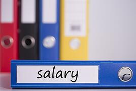 This sample compensation philosophy can help you write one for your company